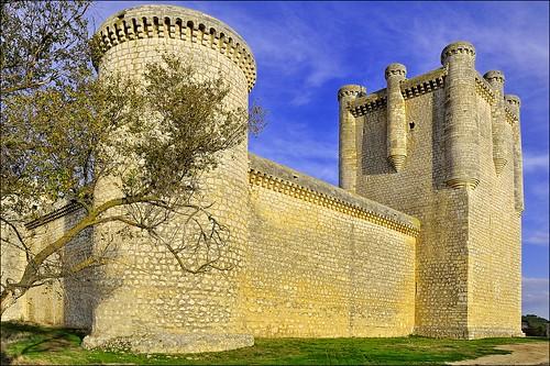 Castillo Torrelobaton