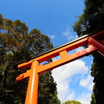 The torii gate of the old shrine