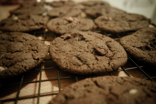 Chocolate-Chocolate Chip Cookies | by rachelakelso