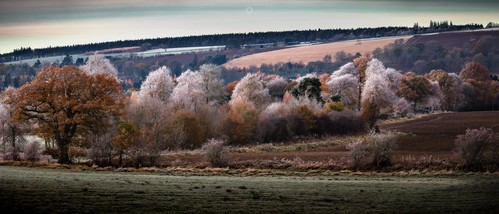 autumn canon colours countryside fall frost landscape leaves nature panorama perthshire scotland seasons trees winter