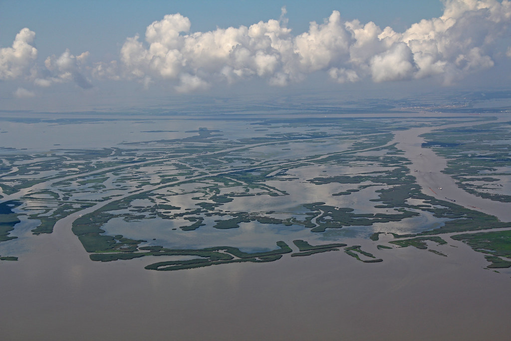 Mouth of mississippi river
