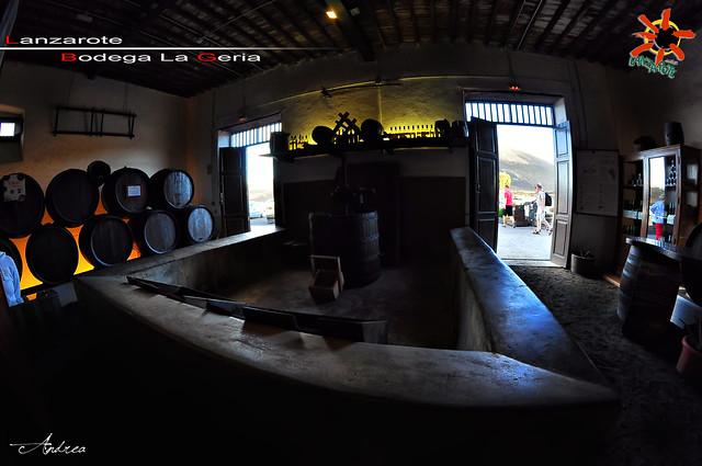 LANZAROTE  -La Geria (Azienda Vinicola)- *Canarie* [13.11.2012]