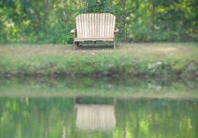 Reflecting on a Bench
