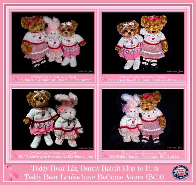Teddy Bear Liz, Bunny Rabbit Hop-to-It & Teddy Bear Louse have BeCome Aware (BCA)!