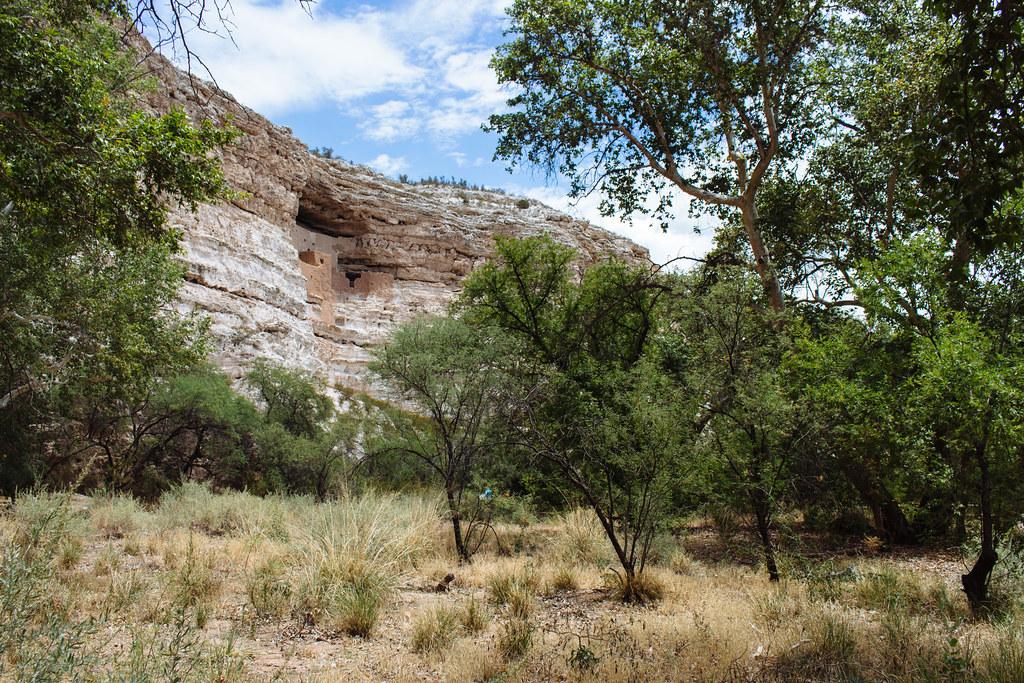 Trees grow in a river floodplain beneath cliff dwellings set into a limestone hill
