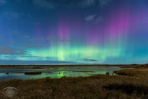 astrophotography astronomy aurora auroraborealis night nightscape northernlights kingston kingstonist ontario space stars sky nature natur
