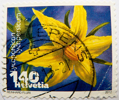 great stamp Helvetia 140c (bloom of tomato, Tomatenblüte; Tomate, Lycopersicon lycopersicum, pomodoro, Paradeiser, 西红柿, 番茄, тома́т, pomidor, トマト, paradicsom, طماطم) Swiss Schweiz Switzerland stamp timbre Helvetia timbre-poste Suisse francobolli bollo 140c