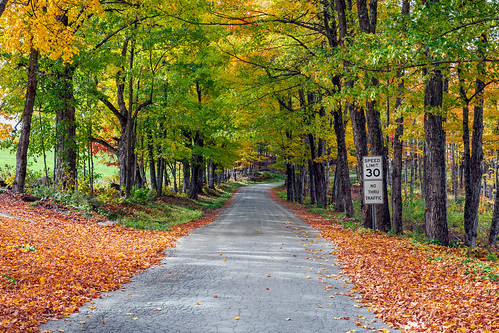 2016 canon canon6d canonef2470mmf28liiusm davetrono mciverroad newengland vt vermont vershire autumn countryroad fall fallcolors fallfoliage foliage geotagged landscape maplesap maplesyrup perspective trees unitedstates road