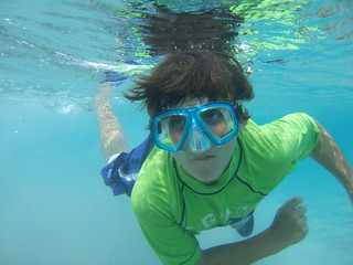 Dylan  swims by