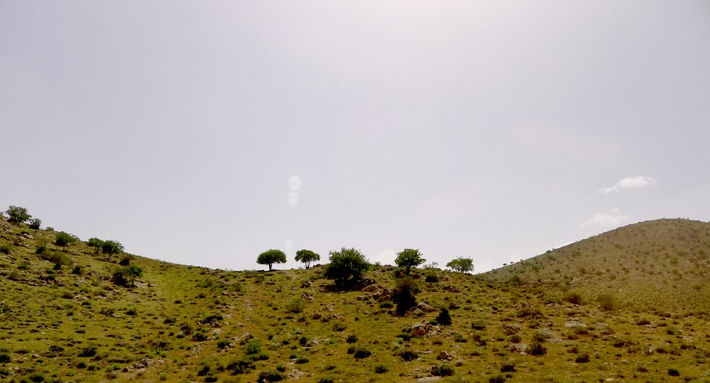 yazd-shiraz-L1030084