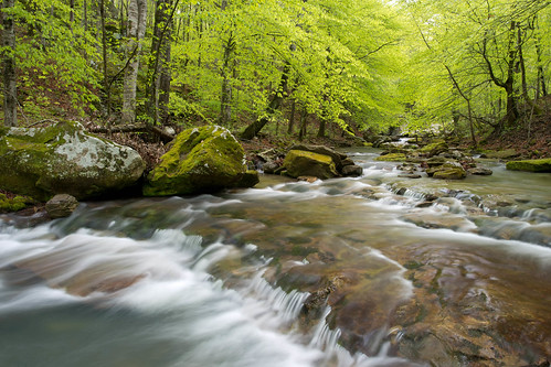Smith Creek | by Buffalo Outdoor Center