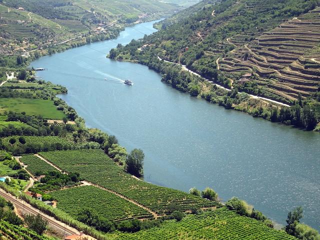 Vinhedos no Vale do Rio D'Ouro. Entre Amarante e Peso da Régua. Portugal