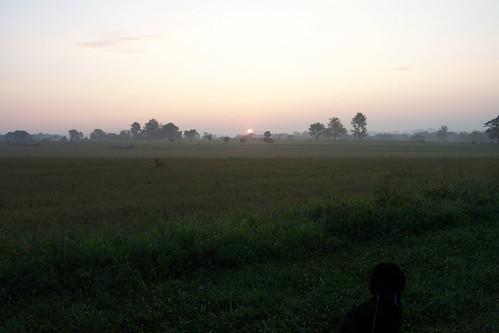 pets sunrise rebel maryland 200908