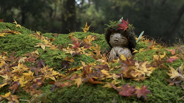Jizo in Autumn 紅葉地蔵