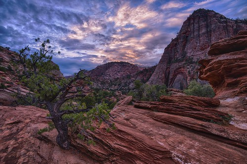 morning red cliff sunrise sandstone rocks day cloudy canyon zionnationalpark zioncanyon canyonoverlook novajosandstones
