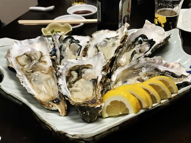 Huge Raw Oysters Hokkaido