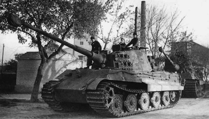 King Tiger tanks from the 503rd Heavy Tank Battalion