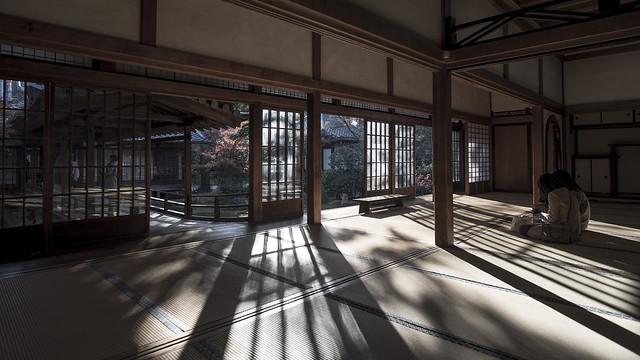 Kenninji Tatami Reflections 畳を照らす日