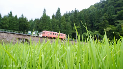 trip travel station japan train trains railways