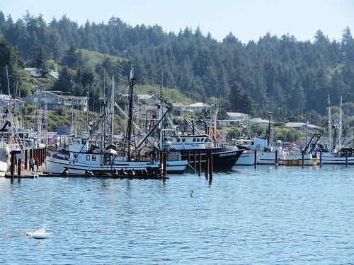 Bayfront Newport, Oregon | by CarolMunro