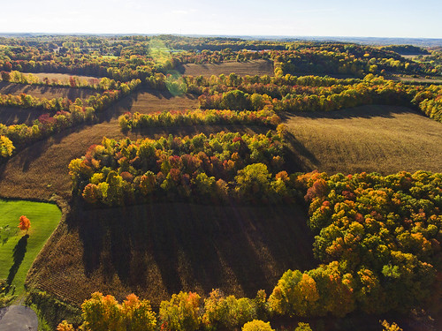 fall autumn foliage sunset beautiful rural farm farmlife farmcountry nature landscape peace peaceful quiet colorful aerial drone dronephotography drones dji djiphantom4 home friday tgif