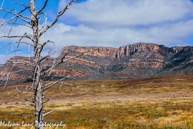 Wilpena Pound ..... Ikara-Flinders Ranges national Park