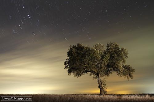 El viento de la noche | by Vanessa y Antonio, foto-geO