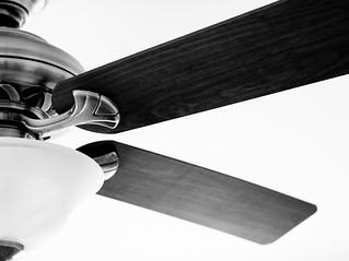 ceiling fan   by Steve A Johnson