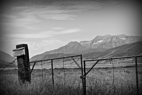 summer blackandwhite bw usa mountain monochrome field fence landscape utah ut charleston hebervalley wasatchmountains mounttimpanogos wasatchcounty 2013
