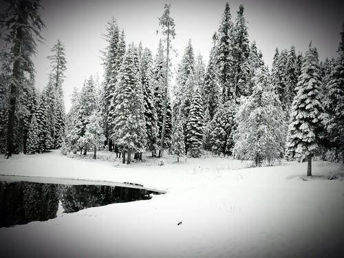 park white snow nationalpark national yosemite