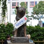 Carmina Japo?n, Tokio 06