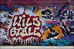 """Wild Style"""