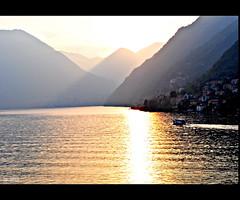 Ramo del Lago di Como III