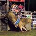 Kyogle Bull-riding Spectacular
