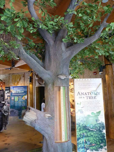 Hidden Oaks Nature Center | by Bolingbrook Parks