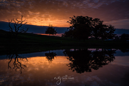 cartonhouse kildareireland sunset reflections trees lake water silouette sky clouds colours canon5dmark3 canon2470mm maynooth carton demesne