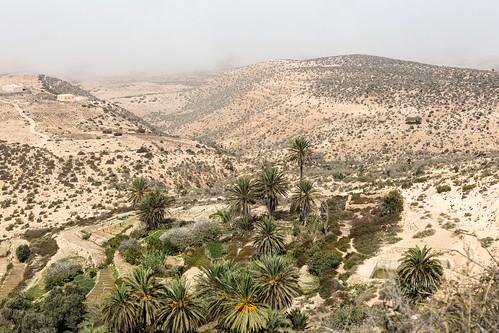 Taroudant nach Essaouira-32