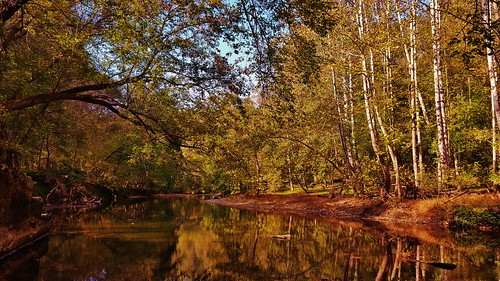 patapscovalleystatepark patapscoriver patapscostatepark howardcounty autumn autumnscenes autumncolors fall fallscenes fall2016 patapsco maryland marylandstateparks reflections