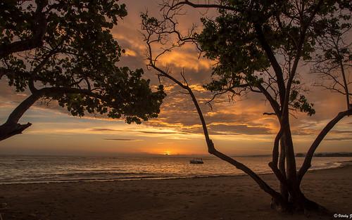 travel d750 fx nikon caribbean dominicana costadorado puertoplata morning summer sunrise beach atlanticocean ocean dominicanrepublic atlantic