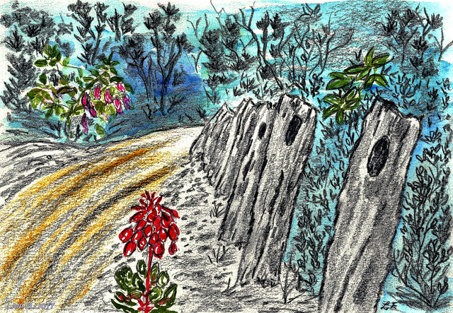 HFF Watercolour and Pencil 'ROAD to LAKE DOBSON' painting