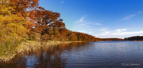chickahominywildlifemanagementarea charlescitycounty virginia va usa morriscreek waterway creek
