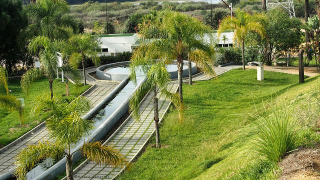 2237   Parque Botánico Celestino Muti, La Rábida,  Huelva