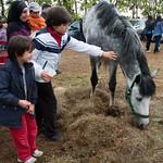Davide e Filippo e il cavallo