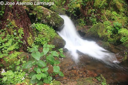 Pequeña cascada #DePaseoConLarri #Photography  2