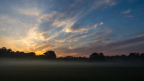 field fog sunrise nikon ky berea d3200