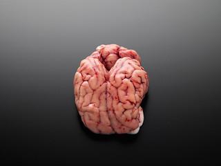 cervelle   by studio mixture