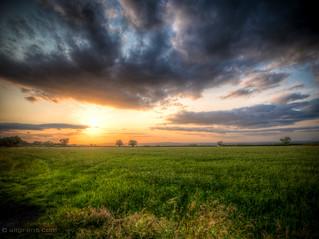 Evening sun over Somerset