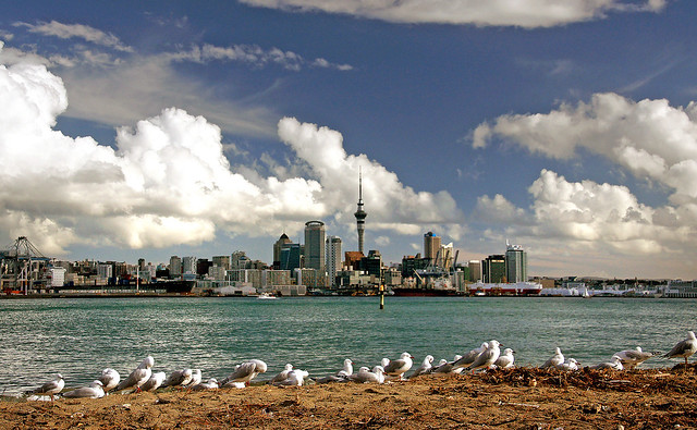 Auckland Skyline. NZ