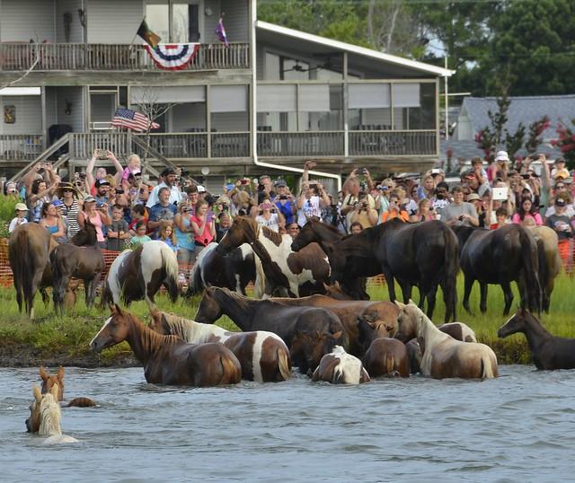 Coast Guard Station Chincoteague helps ensure safe 90th Annual Pony Swim