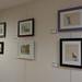 Wed, 01/04/2017 - 13:47 - Indian Arts Project Display